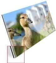 fotoafdruk-acryluxe-10mm